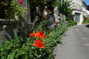 Auvers rue du gré (2).JPG